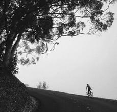 nao pedale destacado